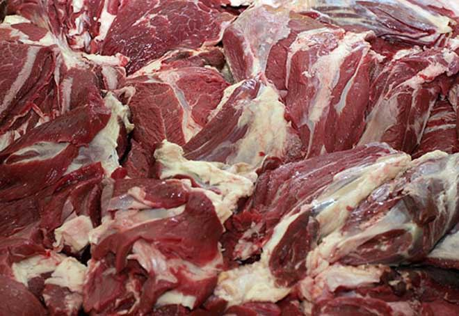 Kazakhstan to launch horse meat export to Japan