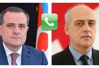 Состоялась телефонная беседа между главами МИД Азербайджана и Грузии