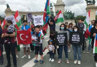 Son 10 gün ərzində azərbaycanlılar bu ölkələrdə aksiyalar keçirib - SİYAHI