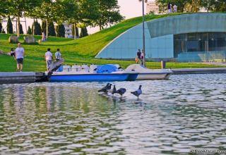 Оазис в центре Баку - под открытым небом у озера с синеватой чистой водой (ФОТО)