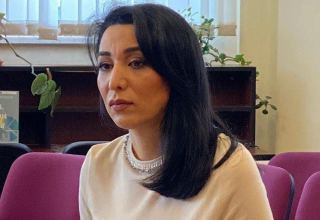 Azerbaijani ombudsman appeals to UN High Commissioner for Human Rights