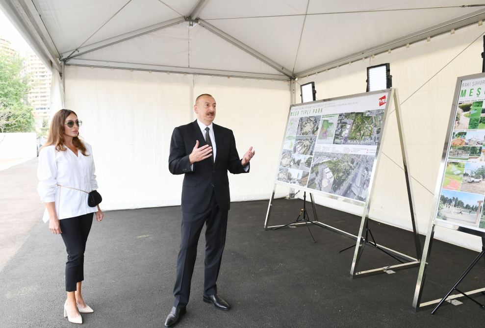 Azerbaijani president, first VP view works to be done in new forest type park in Yasamal district (PHOTO)