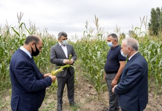 Azerbaijani minister: Specific, serious tasks set to ensure efficient use of water resources (PHOTO)