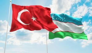 Turkey plans to participate in energy projects of Uzbekistan