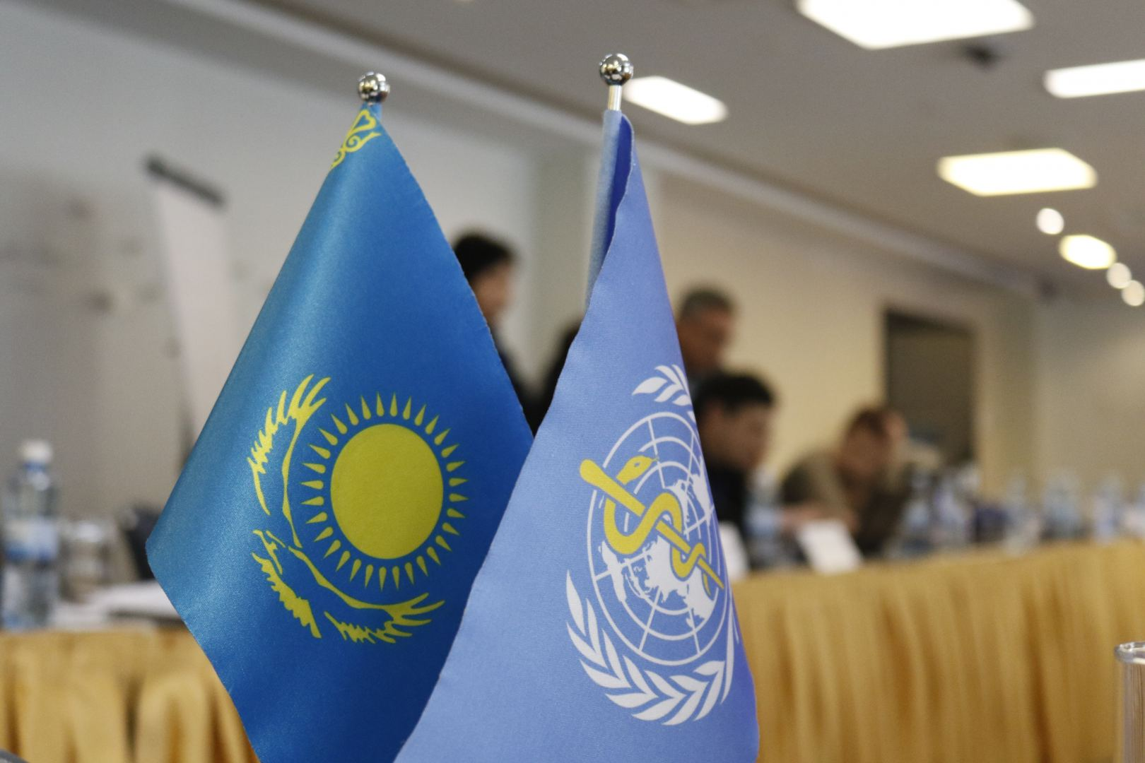 WHO: Kazakhstan committed to ensuring a comprehensive COVID-19 response - Gallery Image