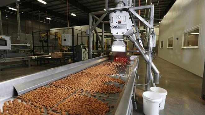 US may increase imports of almonds from Georgia
