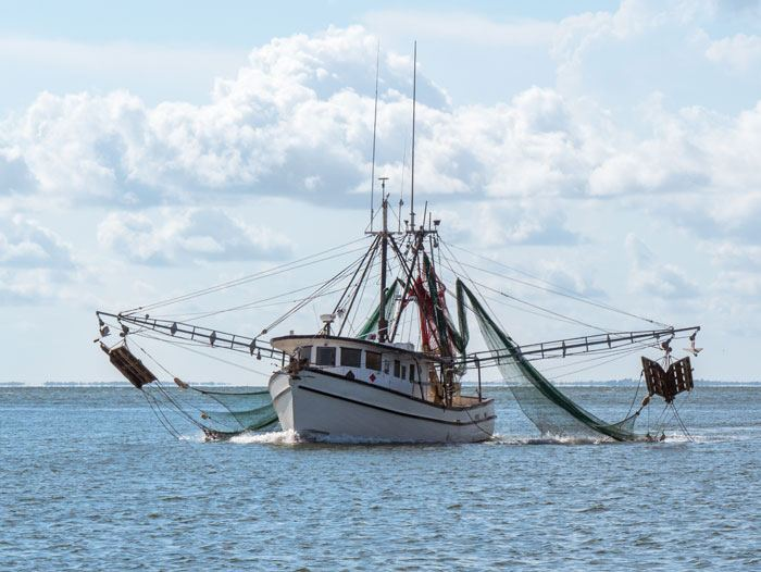 Produce in Georgia agency to finance fishing vessels