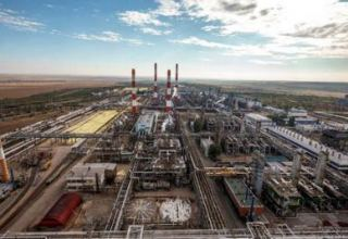 Mubarek oil&gas production dep't owned by Uzbekneftegaz to increase natural gas production