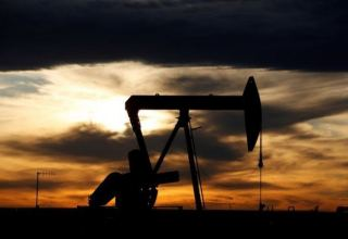 Uzbek oil and gas production dep't announces tender for feasibility studies