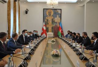Azerbaijani FM meets with deputy chairman of Georgian parliament (PHOTO)