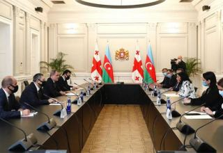 President of Georgia receives Azerbaijani Foreign Minister (PHOTO)