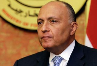 Egyptian FM heads to Jordan for quartet Arab-EU meeting on Palestinian cause
