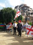 Action in support of Azerbaijan in Georgia (PHOTOS) - Gallery Thumbnail