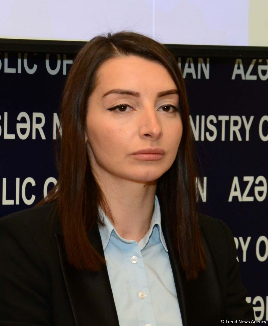Azerbaijani Foreign Ministry, Prosecutor General's Office issue joint statement (PHOTO) - Gallery Image