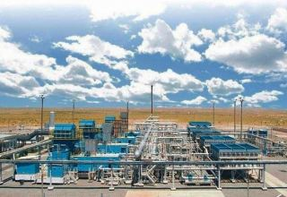 Uzbekneftegaz to accelerate sale of gas stations serving farms
