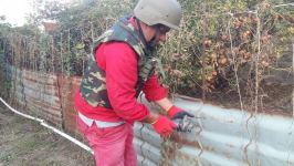 Azerbaijan's ANAMA clears out unexploded ordnance from occupied lands (PHOTO) - Gallery Thumbnail