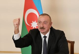 Member countries of Non-Aligned Movement stood up like real men and supported us - President Aliyev