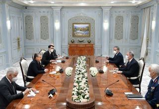 Uzbekistan, Turkey discuss military cooperation