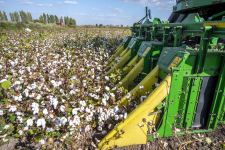 Azerbaijani Ministry of Agriculture holds meeting on results of cotton growing dev't (PHOTO) - Gallery Thumbnail