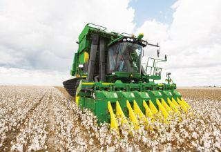 Record-breaking average cotton yield observed in Azerbaijan