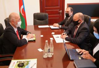 Ambassador of Mexico meets with Azerbaijani Acting Minister of Culture