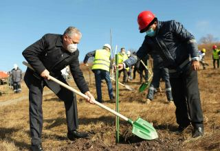 Azerbaijani ministries, AzerGold company hold landscaping campaign on Chovdar field
