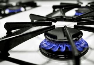 Georgia to increase price of natural gas for commercial consumption starting January