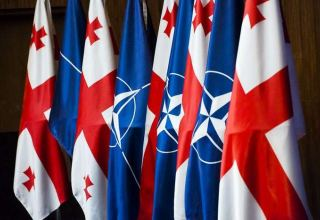 NATO partners appreciate significant contribution that Georgia making to global security