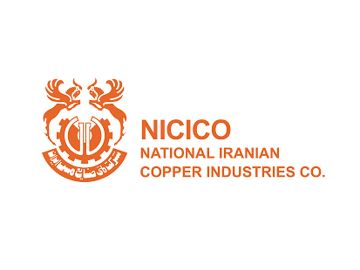 Value of Iran's NICICO to expands