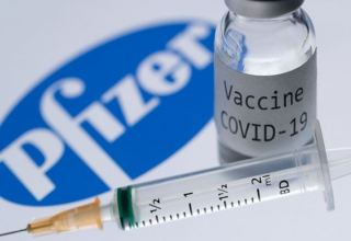 Kyrgyzstan receives documents on Pfizer coronavirus vaccine