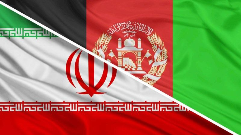 Iran-Afghan coexistence presents new model of immigration: Official