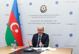 Azerbaijan's contribution allows reducing greenhouse gas emissions - minister