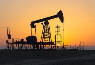 Oxford Institute for Energy Research talks options for Turkmen gas sector's development