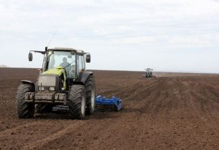 Number of Azerbaijani farmers receiving subsidies for 2020 autumn cropping revealed