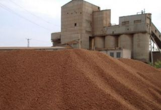 Turkmenistan's expanded clay plant names production volume for 2020