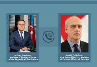 Azerbaijani, Georgian FMs exchange views on latest situation in region