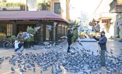"""""""Torqovı""""nun bağlı qalan obyektləri açılış gününü gözləyir (FOTO) - Gallery Thumbnail"""