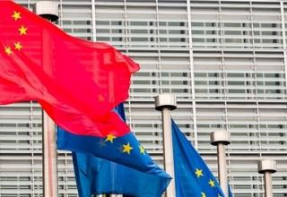 Chinese Mission to EU condemns European Parliament for interfering in Hong Kong affairs