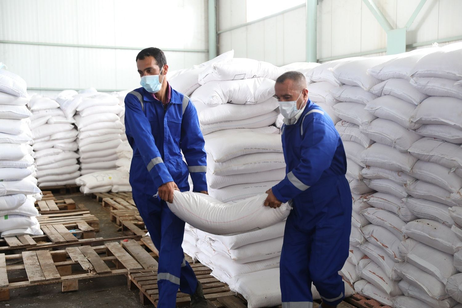 Preps online sale of mineral fertilizers in Azerbaijani regions nearing completion (PHOTO) - Gallery Image
