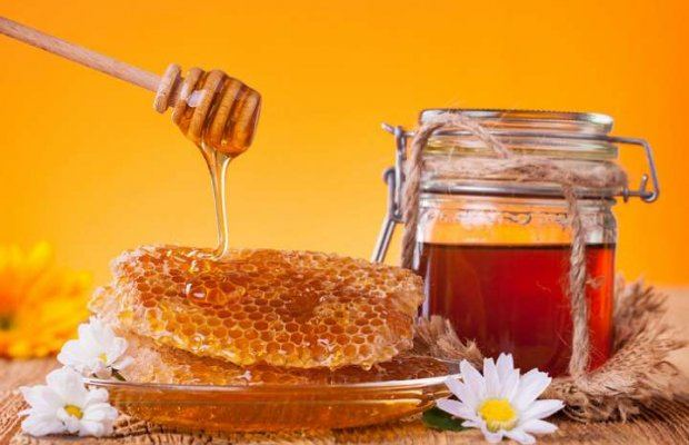 Azerbaijan developing plan to promote beekeeping industry in liberated lands
