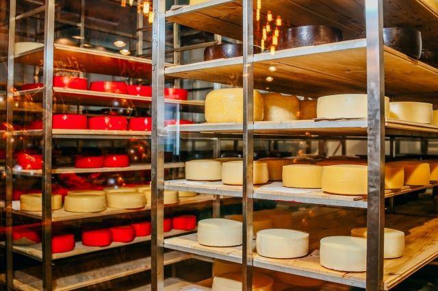 Производство козьего сыра по французским технологиям планируется открыть в Казахстане