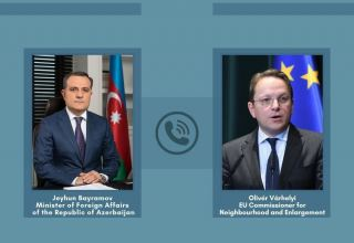Azerbaijani FM, European commissioner for Neighborhood and Enlargement discuss situation in region