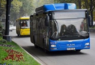 Municipal transport to operate on weekends in Georgia