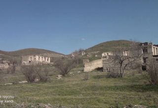 Azerbaijan's MoD shares footage from Gubadly's Afandilar village (PHOTO/VIDEO)