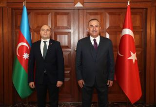 Azerbaijan's minister of culture meets with Turkish MFA's head