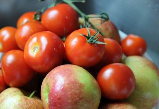 Russia's Rosselkhoznadzor allows imports of apples, tomatoes from some Azerbaijani enterprises