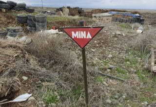 Azerbaijani Mine Action Agency continues to clear Gubadly, Zangilan, Jabrayil from mines