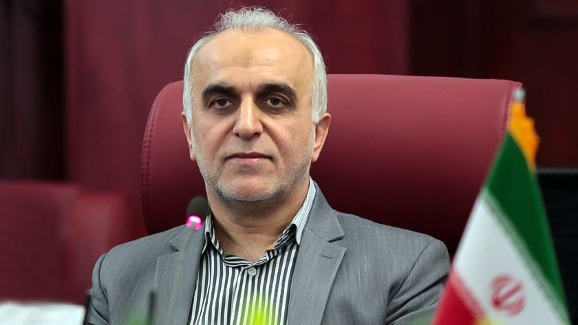 Iran fully implements plan on tax revenues - minister