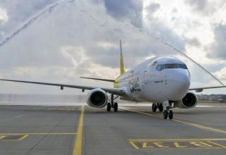 Ukrainian Bees Airline plans to carry out Kyiv - Tbilisi - Kyiv flights