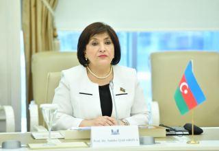 Спикер парламента Азербайджана обратилась к международным организациям (ВИДЕО)